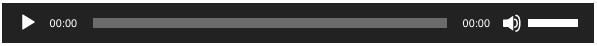 WordPress Default Audio Player