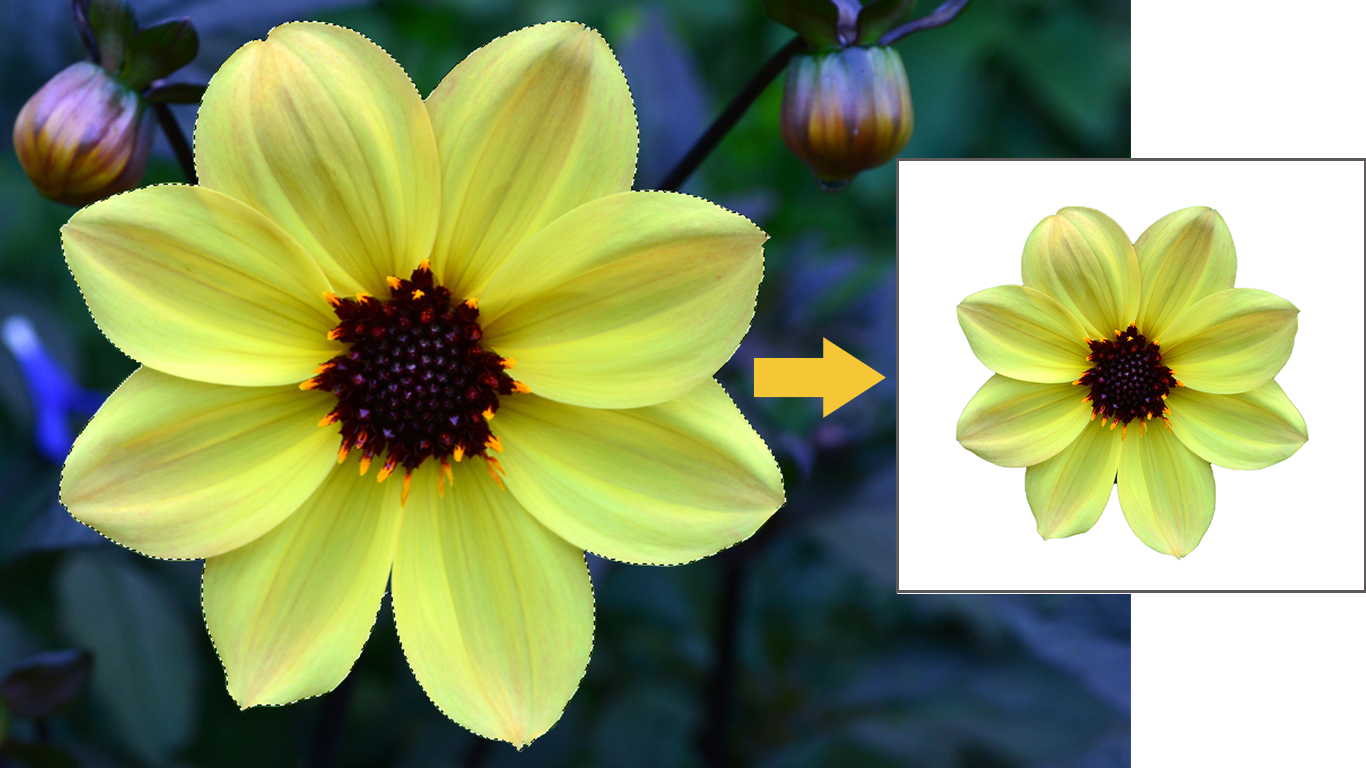 Example of selection in Photoshop